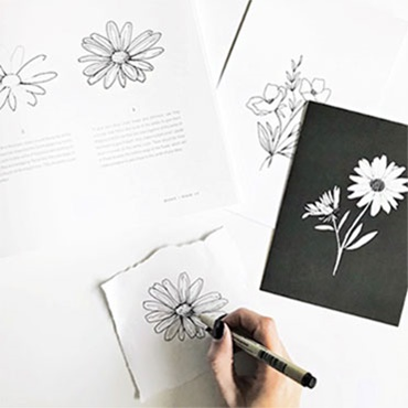 How To Draw Cacti & Florals