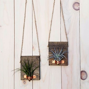 Wood and Copper Air Plant Holder